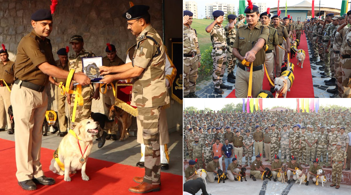 CISF Dogs, Who Protected Delhi Metro, Get Emotional Farewell on Retirement Day, Receive Medals, Salutes, Hugs And Selfies