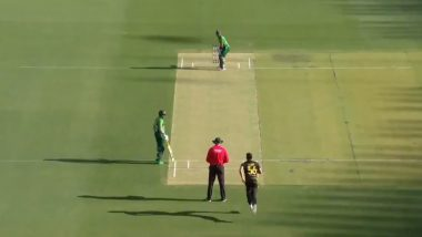 Mitchell Starc Clean Bowls Mohammad Rizwan For a Duck With a Stunning In-Swinger During Australia vs Pakistan 3rd T20I 2019 Match (Watch Video)