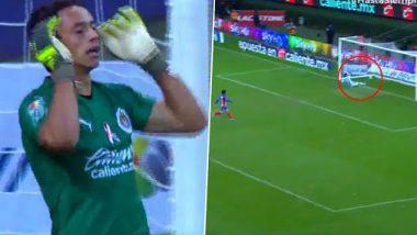 GD Guadalajara's Keeper Antonio Rodriguez Scores From His Own Box in a Liga MX 2019–20 Clash With Veracruz (Watch Video)