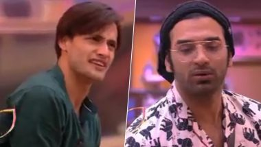 Bigg Boss 13 Day 57 Highlights: Paras Chhabra Chides Asim Riaz, Tells Him That His Status Has Gone Up by Sharing Screen Space With Him