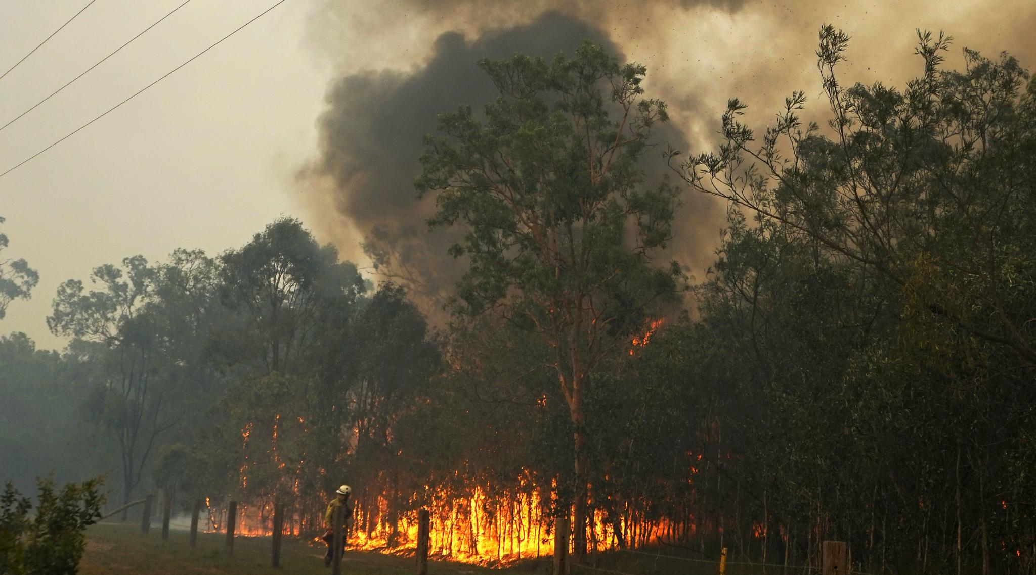 Queensland Bushfires: Australia State Declares Fire Emergency After 150 Homes Lost