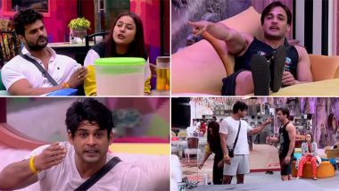 Bigg Boss 13 Day 45 Highlights: Sidharth Shukla vs Asim Riaz, Devoleena Bhattacharjee Blasts at Hindustani Bhau, and More, Tune In to Find Out!