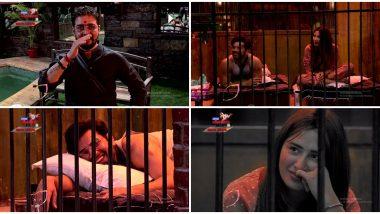 Bigg Boss 13: Hindustani Bhau 'Lip' Shames Mahira Sharma, Calls Her 'Bade Honth Wali Chipkali' (Watch Video)