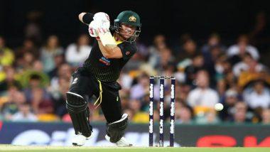 Australia vs Sri Lanka 3rd T20I 2019: David Warner Fifty Helps AUS Register 3-0 Sweep Over SL