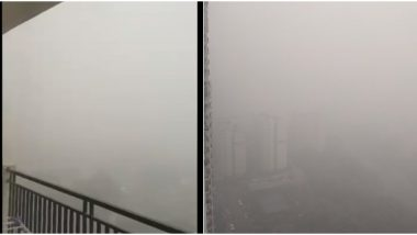 Delhi Air Pollution: Residents Share Pictures and Videos of Smog and Zero Visibility as NCR Continues to Struggle With Severe Air Quality (View Pics)