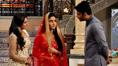 JUST IN! Rashami Desai Was the Real Villain Behind Dil Se Dil Tak Co-Stars Sidharth Shukla and Jasmin Bhasin's Broken Friendship, Full Story Inside