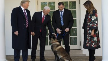 Conan,US Dog Who Helped in Raid That Killed Abu Bakr al-Baghdadi, Gets Awarded by Donald Trump