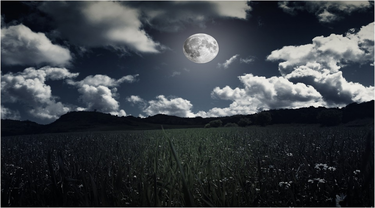 Full Beaver Moon 2019 Date: Know Everything About November's Full Moon And How it Gets Its Name