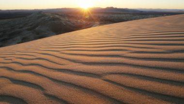 Rajasthan's Churu Records Highest Temperature of 43.3 Degrees Celsius