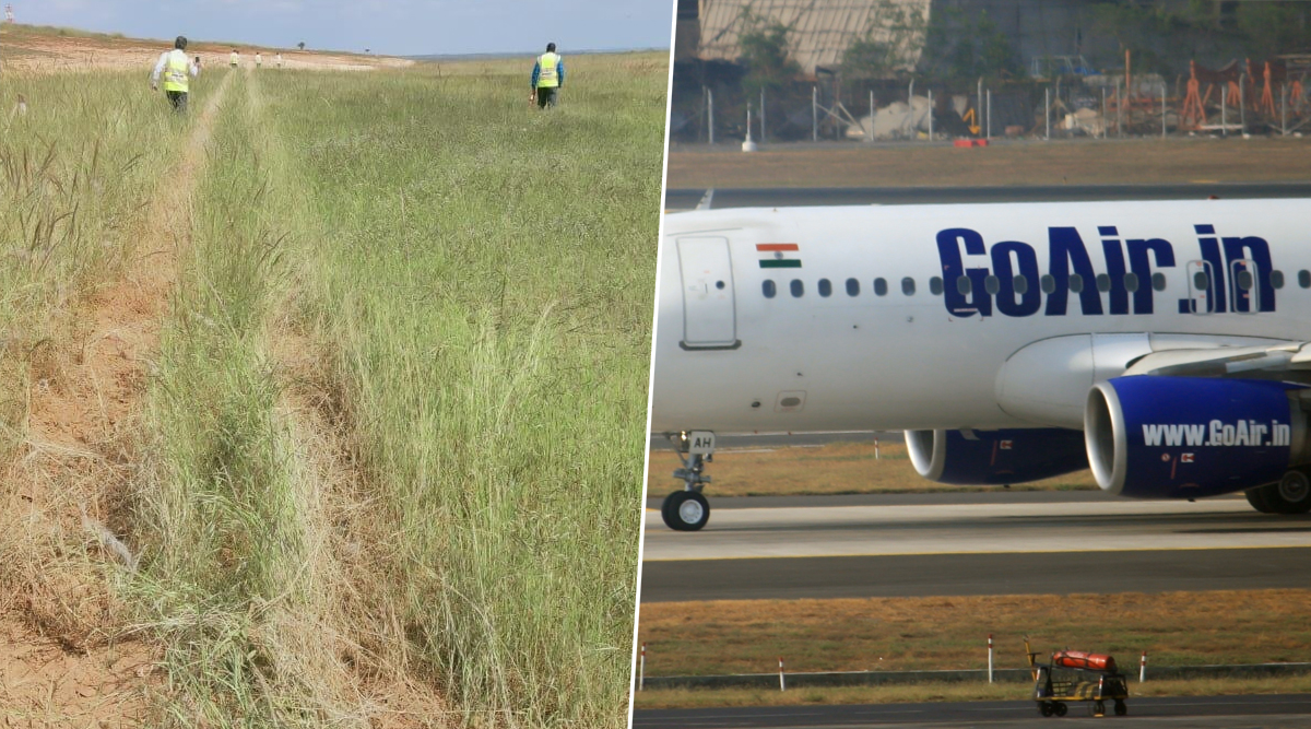 GoAir Plane Veers Off Runway Onto Grass Field in Bengaluru, All Passengers Safe; Pilot Suspended
