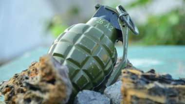 Jammu And Kashmir: Two Civilians Killed in Grenade Attack in Panchayat Ghar Hakura Area of Anantnag District