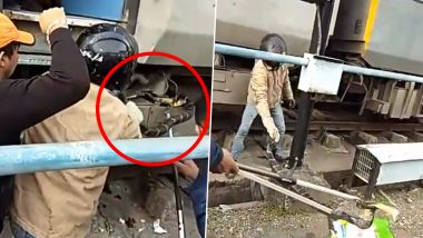 10-Foot-Long King Cobra Rescued From Super-Fast Train in Uttarakhand (Watch Video)