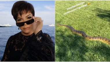 Anaconda in Kim Kardashian's Backyard! Kris Jenner Shares Video of The Massive Snake From Her Daughter's LA House