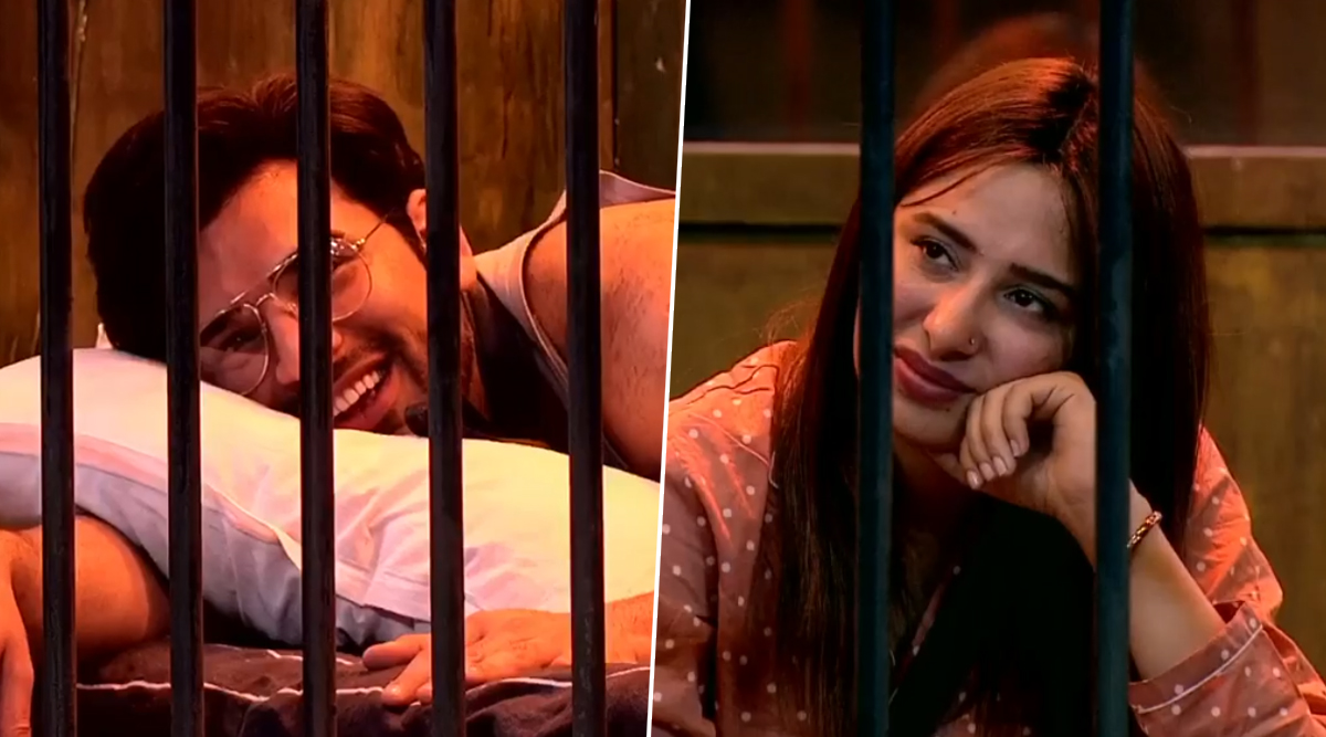 Bigg Boss 13 Day 46 Synopsis: Will Mahira Sharma and Paras Chhabra Be the Next Pals to Part Ways on Salman Khan's Reality Show?