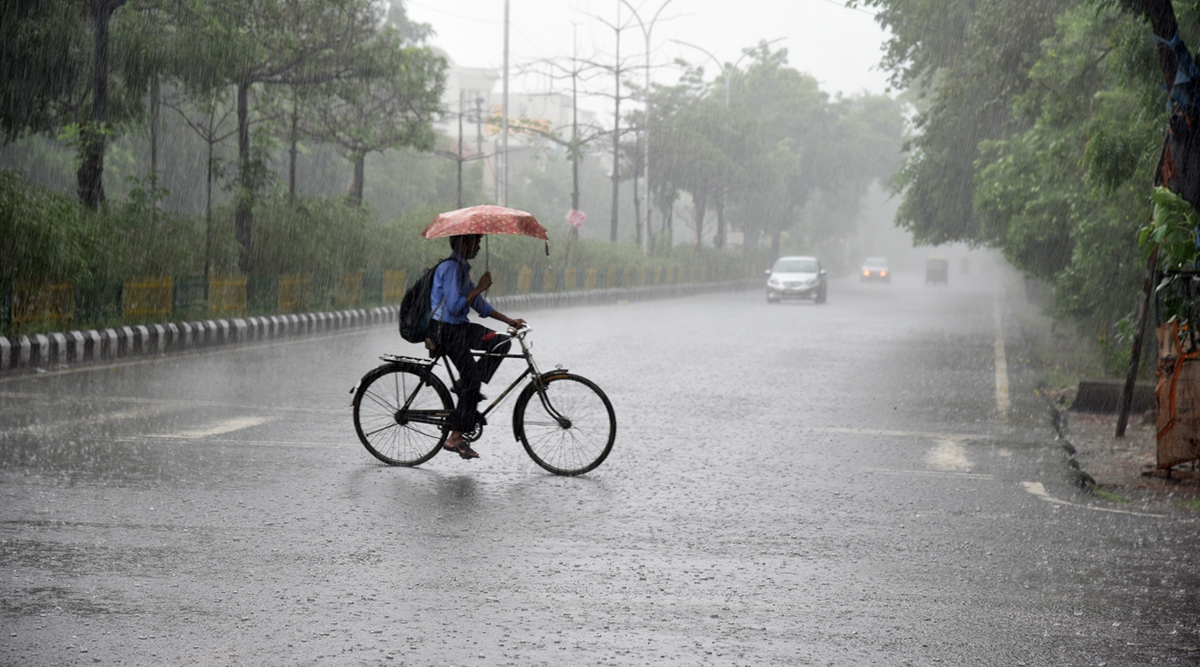 Tamil Nadu Rains: Holiday Declared in Schools and Colleges in Trichy Due to Heavy Downpour