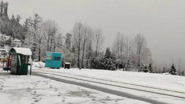 Manali, Shimla, Kufri Get Season's First Snowfall