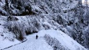 Winter 2019: Intense Cold Wave to Grip J&K, Uttarakhand, Parts of North India in Coming Days, Says IMD