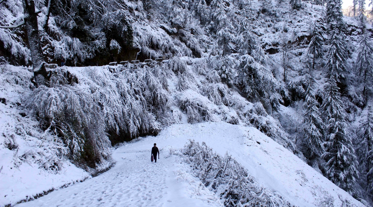 Winter 2019: Cold Wave Grips Jammu and Kashmir, Himachal Pradesh and Uttarakhand, More Snowfall Likely Over Next 24 Hours, Says IMD