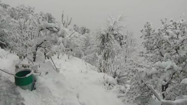 Vaishno Devi Shrine Receives Season's First Snowfall, Highway Blocked Due to Heavy Snowfall in Kashmir Valley