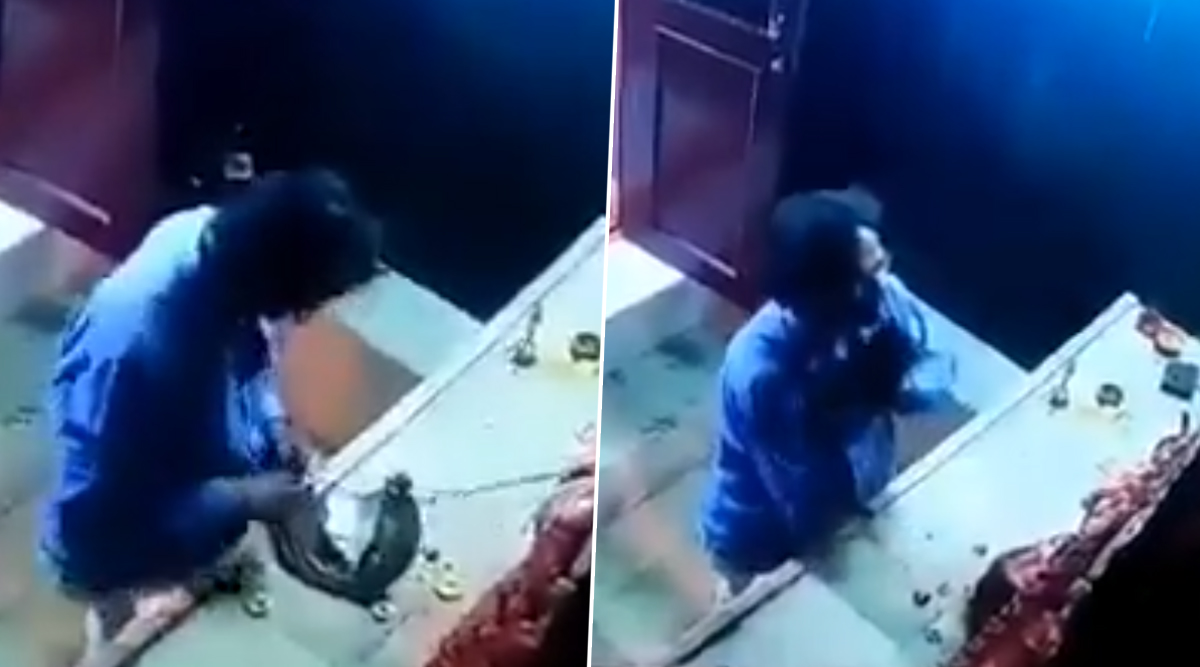 Hyderabad: Thief Prays to Idol Before Stealing the Crown of The Goddess, Gets Caught on Camera (Watch Viral Video)