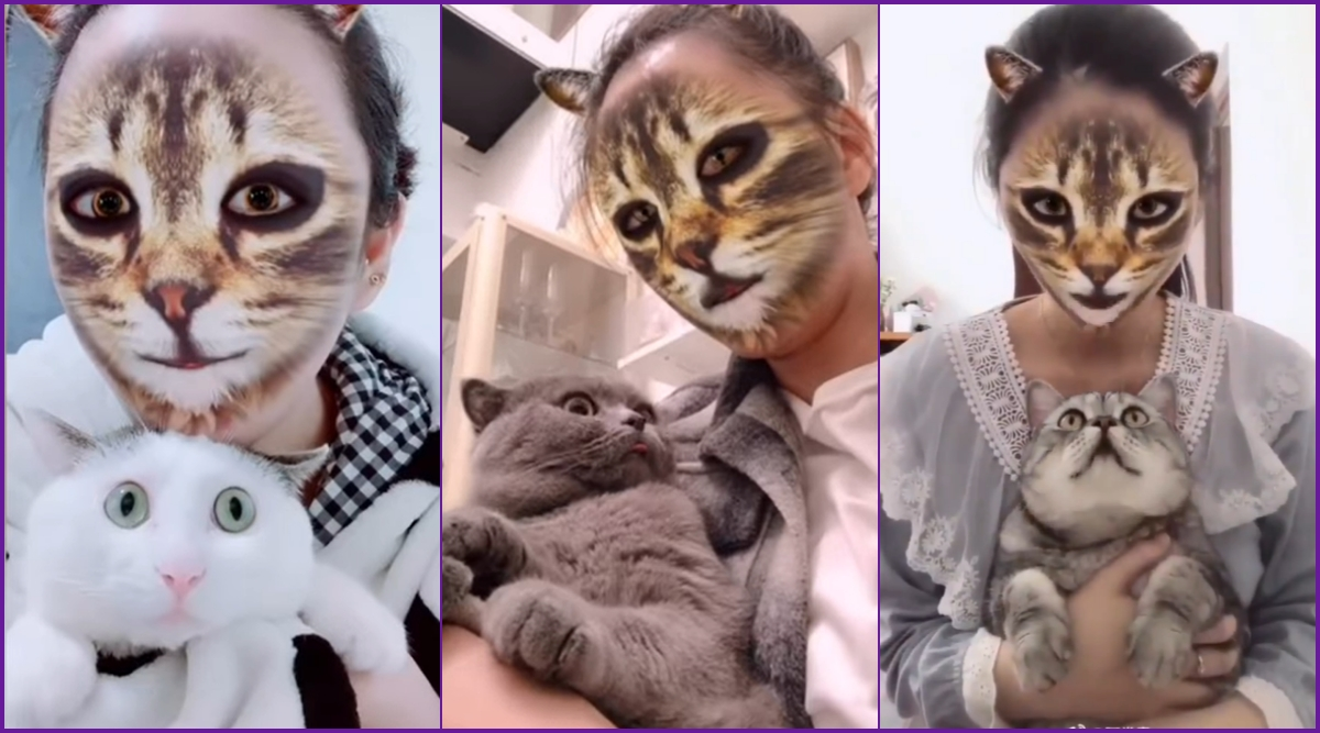 TikTok Users Are Trying Out The New Cat Filter With Their Pet Felines and The Reactions Are Priceless (Watch Viral Videos)