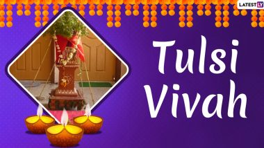 Tulsi Vivah 2019 Date: Significance, Mythology, Puja Muhurat Related to Ceremonial Marriage of the Goddess Tulsi to Lord Vishnu