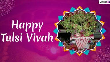 Tulsi Vivah 2019 Wishes: WhatsApp Stickers, Facebook Greetings, GIF Images, SMS And Messages to Send on The Festival