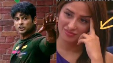 Bigg Boss 13: Did Mahira Sharma Show The Middle Finger To Sidharth Shukla On National Television? View Pic