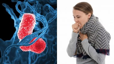 How To If Know You Are Infected By the Killer Coronavirus? Here's How the Disease Progresses From Pneumonia to Kidney Failure