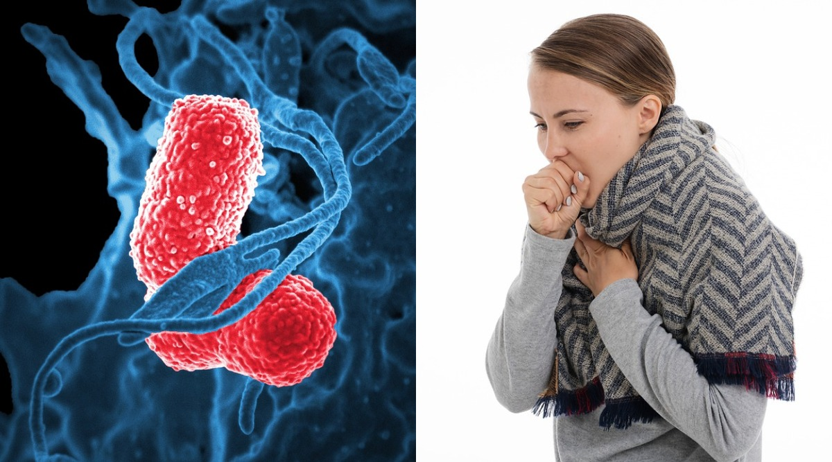 World Pneumonia Day 2019: Facts, Causes, Symptoms, Treatment And Prevention of The Deadly Infection