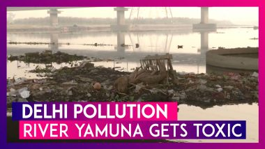 Delhi Pollution: Locals Suffer As River Yamuna Gets Toxic