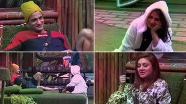 Bigg Boss 13: Himanshi Khurana Tells Asim Riaz That 'She Has Feelings For Him', What About Her 9 Year-Old Relationship Outside The House? (Watch Video)