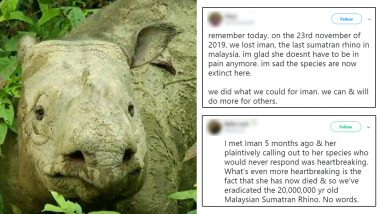 Iman, Malaysia's Last Known Sumatran Rhino Dies Due to Cancer, Twitterati Mourns (View Pics)
