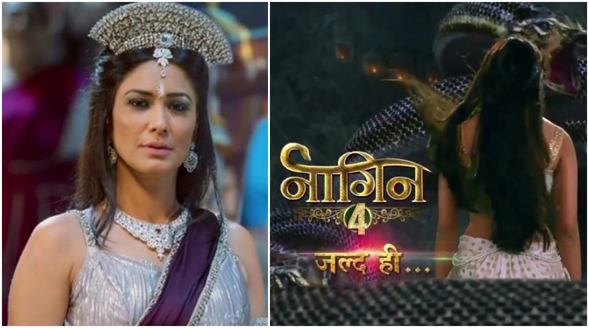 Naagin 4: Aparna Kumar to Play Shape-Shifting Snake in Ekta Kapoor's Supernatural Drama?