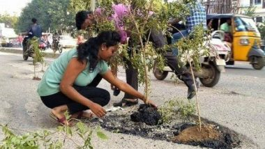 Hyderabad: Locals Stage Protest by Planting Trees Inside Potholes on Roads