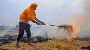 Punjab: Stubble Burning Count Crosses 48,000 Mark, Despite Rs 100 Per Quintal Incentive to Farmers to Stop Burning Crop Residue