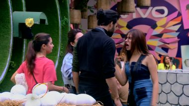 Bigg Boss 13 Episode 49 Sneak Peek 02 | 06 Dec 2019: Luxury Budget Task Gets Violent
