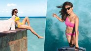 Nushrat Bharucha's Holiday Album is all About Bikinis and Some More Bikinis