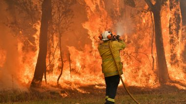 Australia Bushfires: Sydney Electricity Under Threat as Fires Destroy Substations
