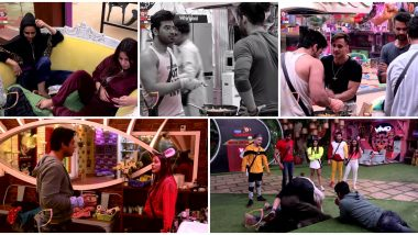 Bigg Boss 13 Day 72 Highlights: Shefali Bagga and Rashami Desai Yell At Each Other, The Latter Breaks A Plate In A Fit Of Rage