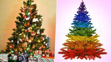 Christmas 2019: Xmas Tree Traditions Across Countries That Portray Various Traditions And Customs