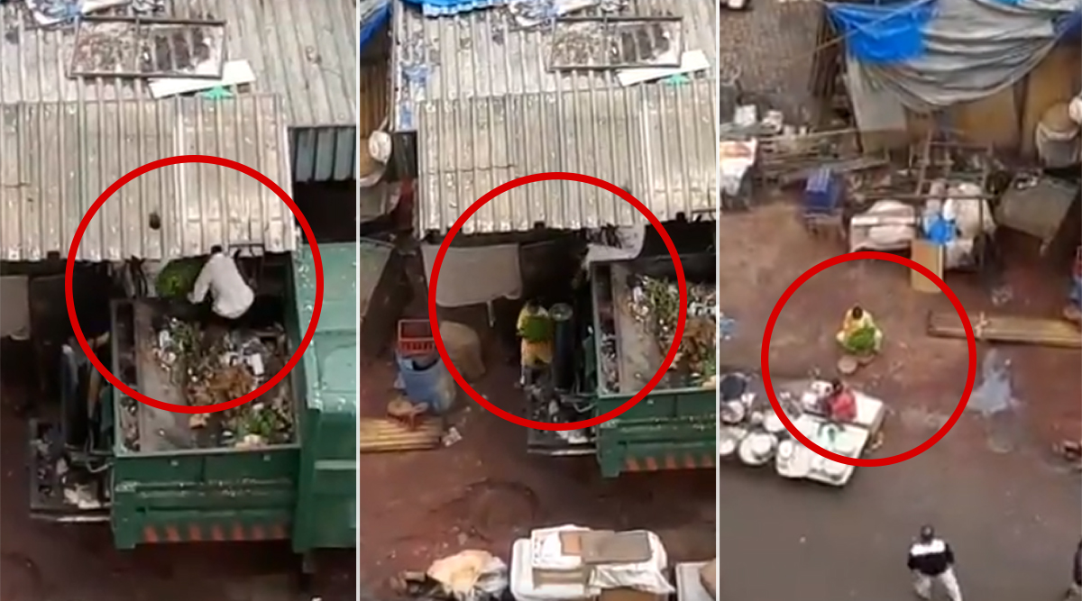 Mumbai: Viral Video Shows Vegetable Removed From Garbage Vehicle Apparently Being Kept For Sale, Uploaders Claim Footage is of Colaba