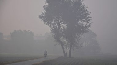 Weather Forecast: IMD Predicts Cold Wave in Parts of Jharkhand, Odisha