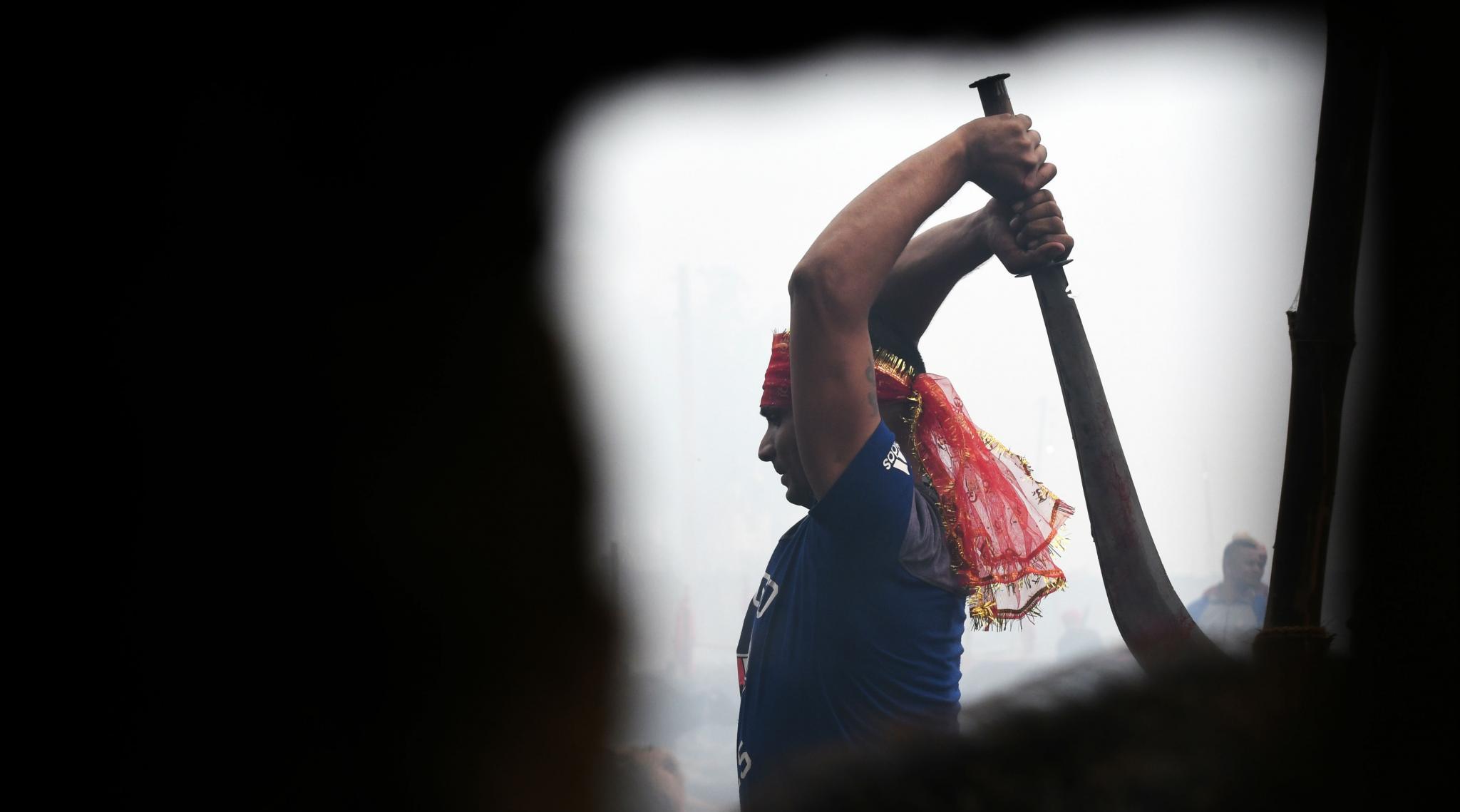 Gadhimai Festival 2019: Nepal's Mass Animal Slaughter Begins Despite Outcry