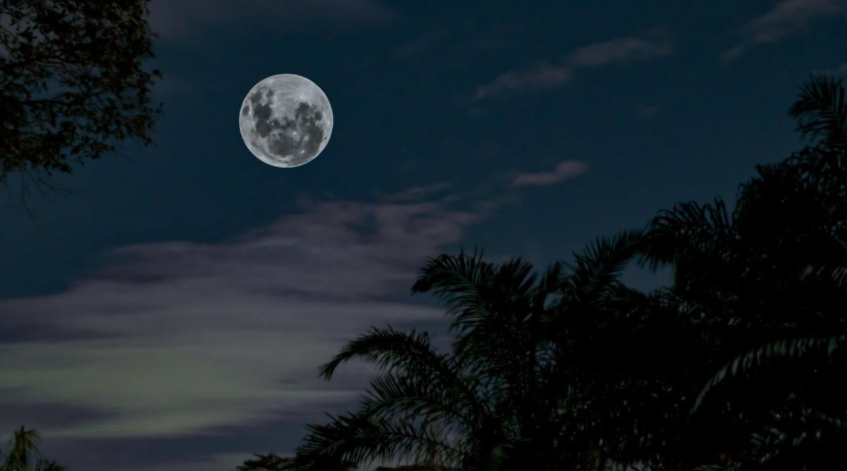 Long Night Moon 2019: What is a Long Night Moon?, What is the Cold moon? Top Queries on Cold Moon Answered