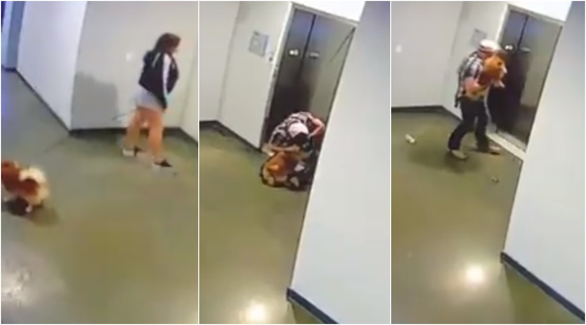 Man Saves Neighbour's Pet Dog After Its Leash Gets Caught in Elevator Doors, Dramatic Rescue Video Goes Viral