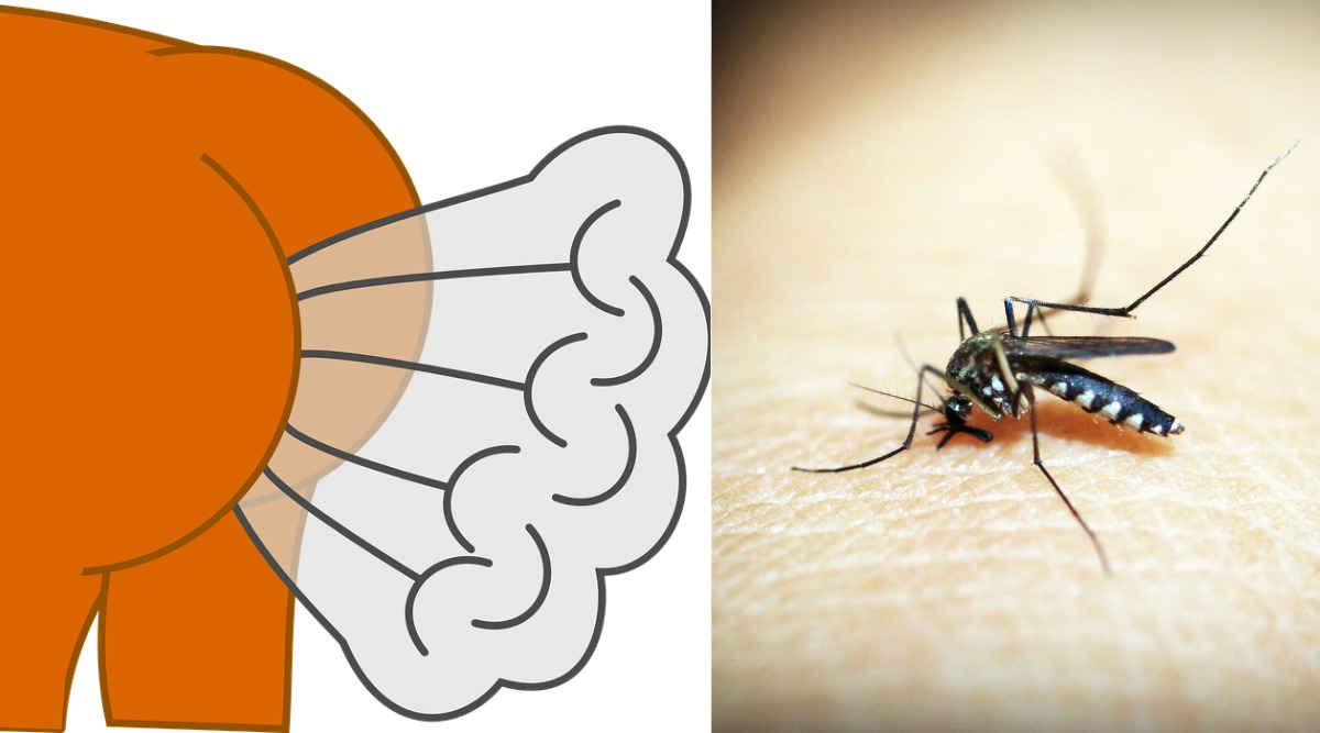 Ugandan Man's Farts Can Kill Mosquitoes 6 Miles Away, Hopes to Get Hired by Insect Repellent Company (Watch Video)