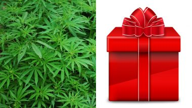 Man Passes Off 80 Pounds Marijuana as Christmas Gift, Gets Caught And Jailed at Nashville Airport