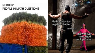 National Mathematics Day 2019: Funny Maths Memes and Jokes That Will Cry And Laugh At The Same Time