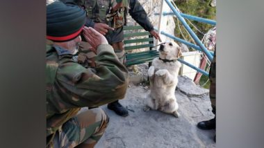 Dog 'Menaka' Saluting Army Commander Lt Gen KJS Dhillon Sets Social Media Abuzz, Here's The Story Behind Viral Picture